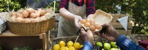 marché agricole