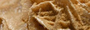 vertus thérapeutiques de la rose des sables