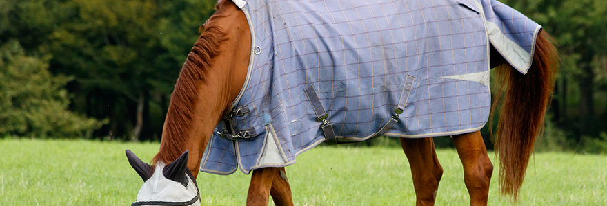 couverture pour votre cheval